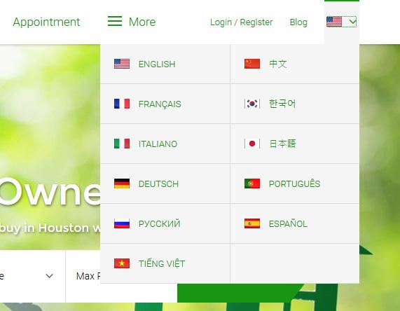multilingual website seo l
